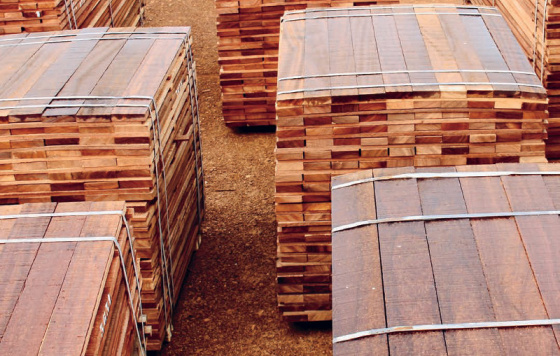 cennye-porody-drevesiny-2