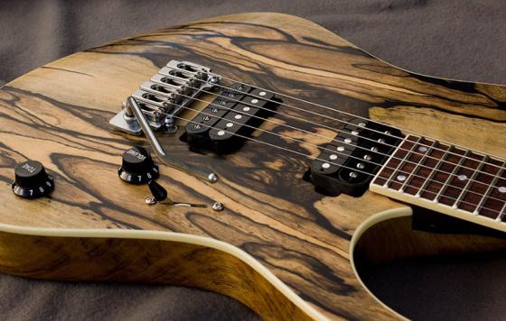 lunnyi-eben-gitara